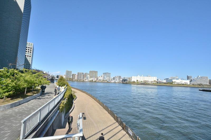 春の新川公園・墨田川テラス