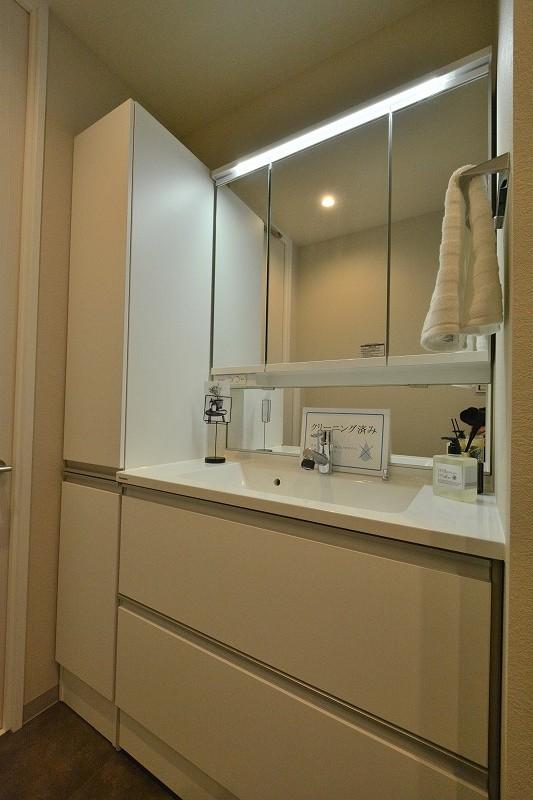 ラヴェンナ日本橋の洗面化粧台